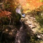 樽の滝(紅葉)