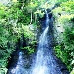 樽の滝(新緑)