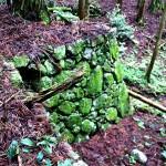 桂木付近の石垣
